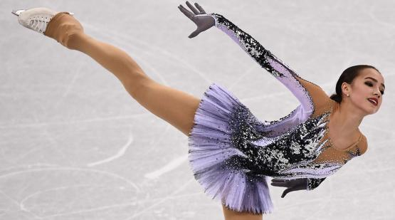 Ice Dancing costume