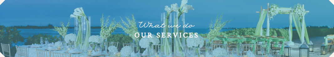 What We Do - Our Services