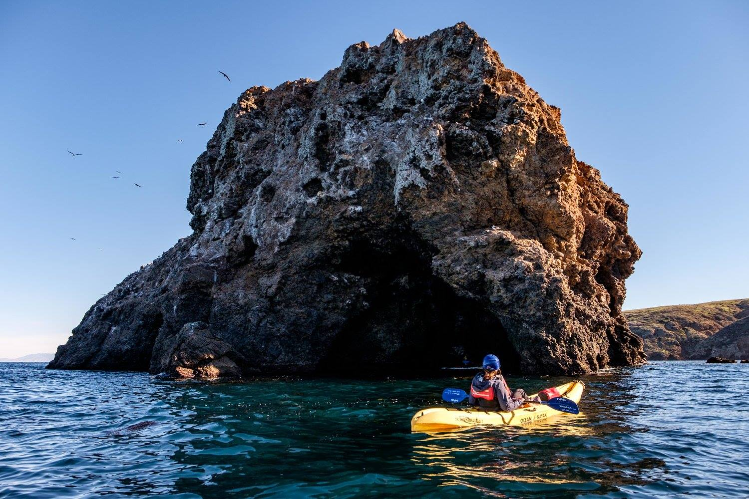 Social Media Contest Supporting Channel Islands Park Foundation