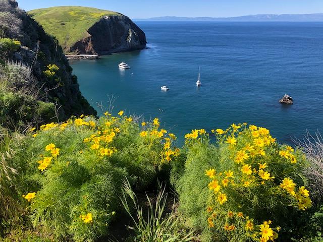 Santa Cruz Island tour