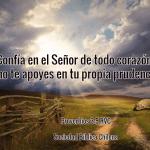 Versículos para mantener la fe viva y perseverar
