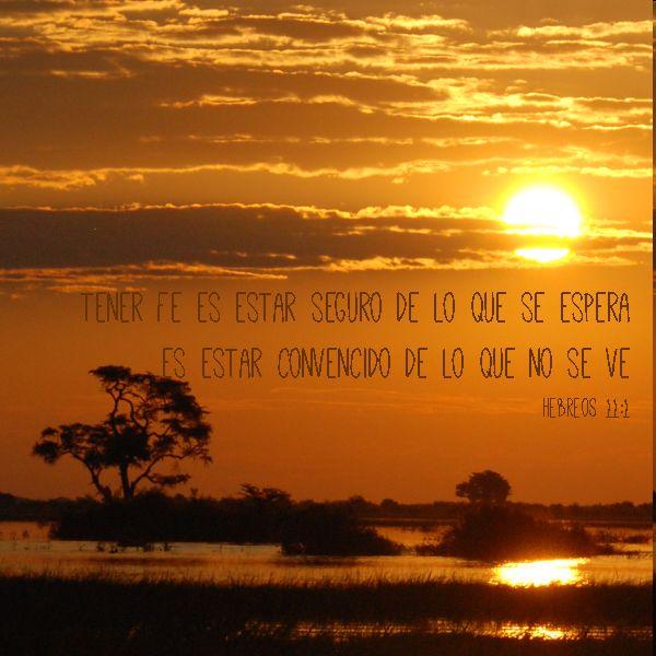 Versiculos De La Biblia De Fe: Versículos Para Mantener La Fe Viva Y Perseverar
