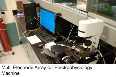 electrophys_20_4441798712_o