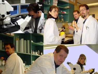 Dr. Gordon Glazner, Cellular Neuropathology & Neurodegeneration