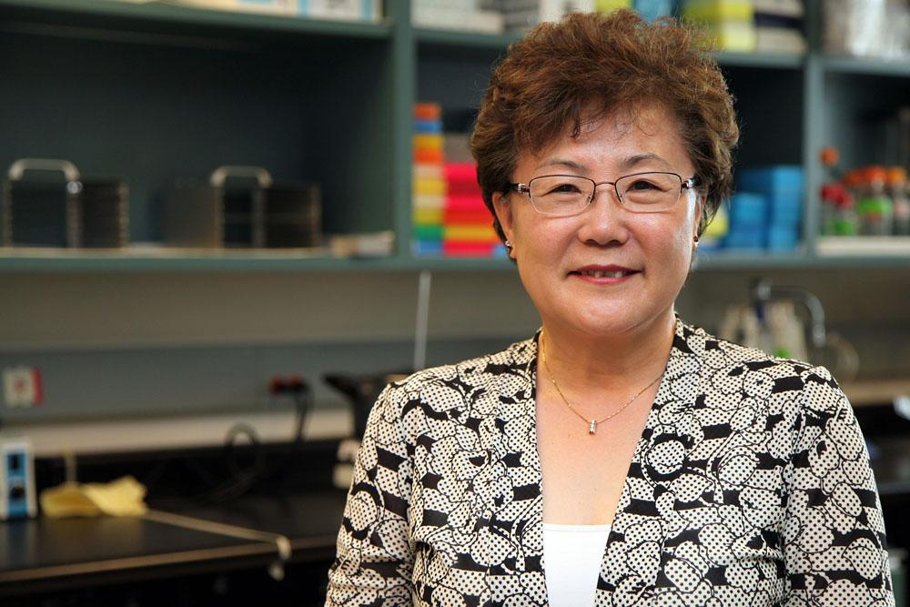 Dr. Suh