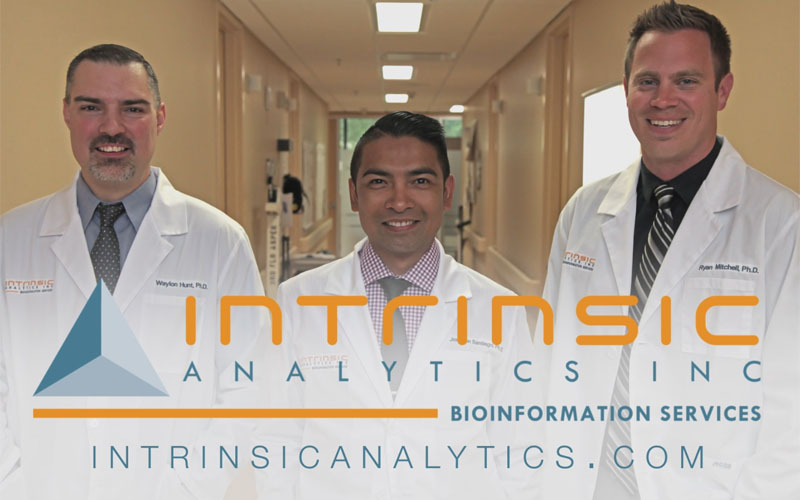 Intrinsic Analytics