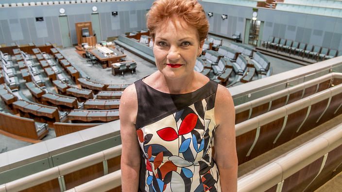 Image result for pauline hanson please explain