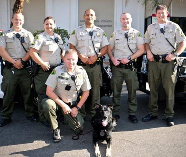 The Santa Barbara Sheriffs Office Goal Is To Provide Professional Law Enforcement Services To The Citizens Of Santa Barbara County To Accomplish Our Goal