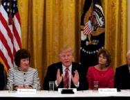 Trump meets Senate Republicans at the White House in Washington