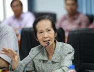 Bà Phạm Chi Lan (Dân Trí)