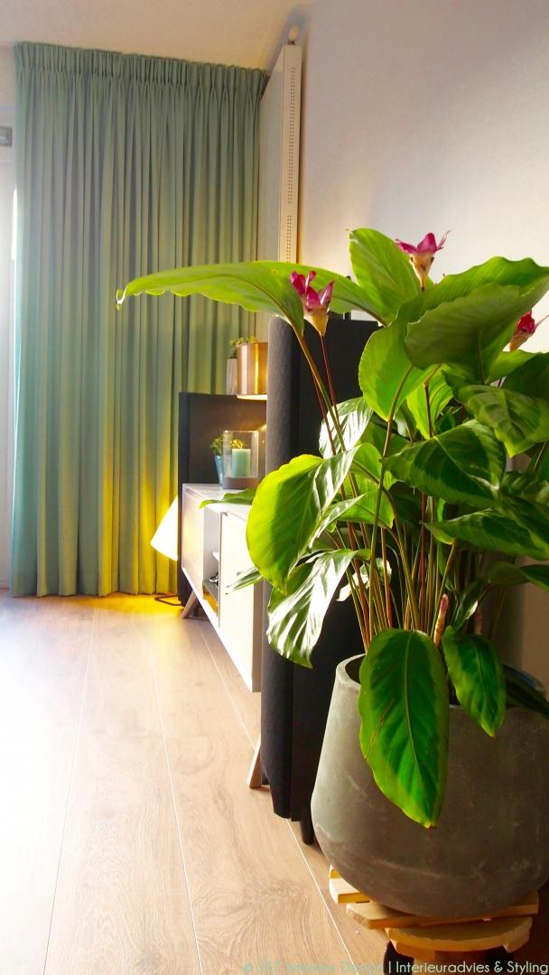 Interieur project & styling benedenverdieping woning te Gouda • SBZ ...
