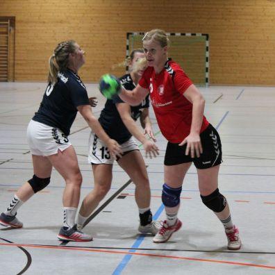handball-f1_2019_pleichach_04