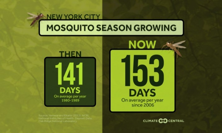 Mosquito season growing New York City