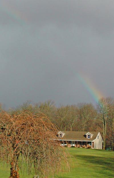 rainbow1201.jpg