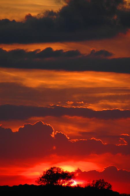 sunset100906.jpg