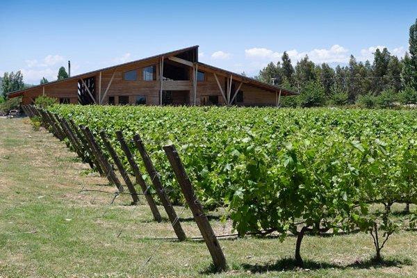 SCAN_20190504_Inteligencia-competitiva_Emiliana-Chile-mercado-vinícola