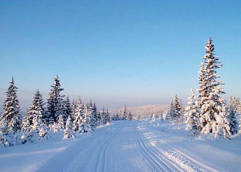 Sjusjen Lillehammer Scandinavian Dreams