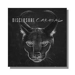 Caracal disclosure