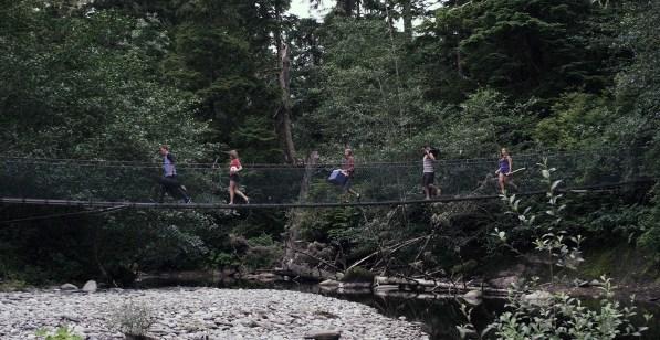 Dark Cove - Bridge still