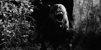 Digging Up The Marrow Scream