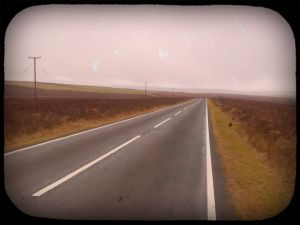 Birthday ride in the wind and rain #dailyphoto 8
