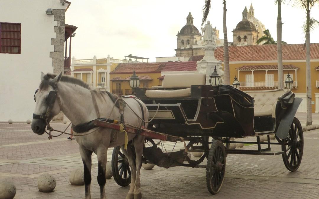 No snappers in Cartagena?