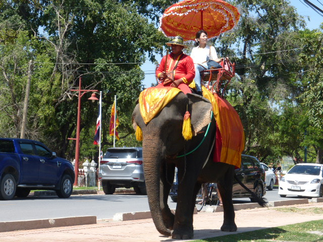 Riding elephants in Ayutthaya