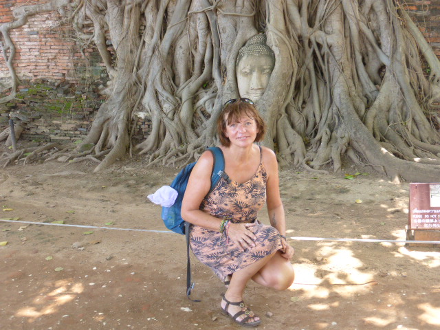 visiting the Buddha's head in Ayutthaya