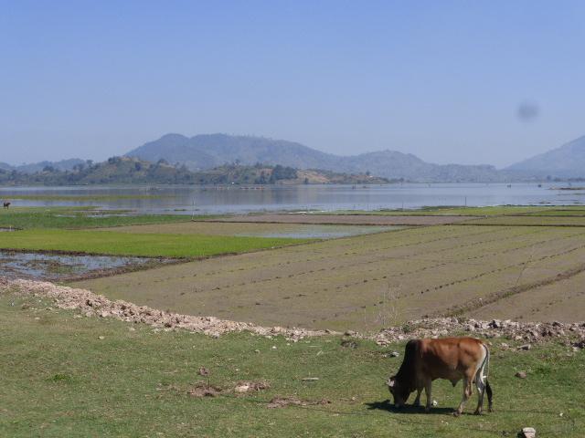 Lak Lake rural scene