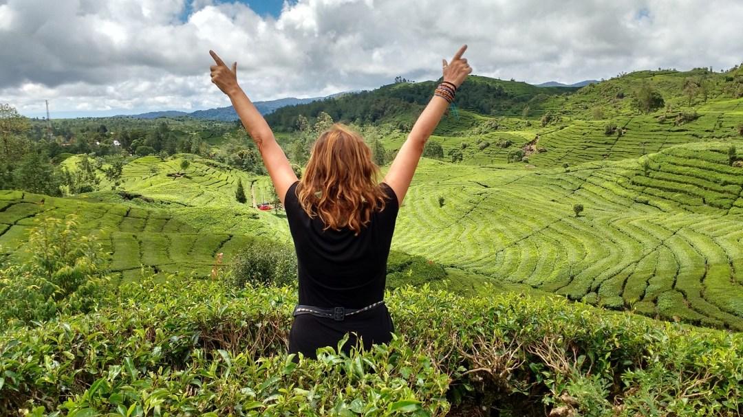 Scarlet Jones (aka Jane Clements) inspiration from a tea plantation on Java