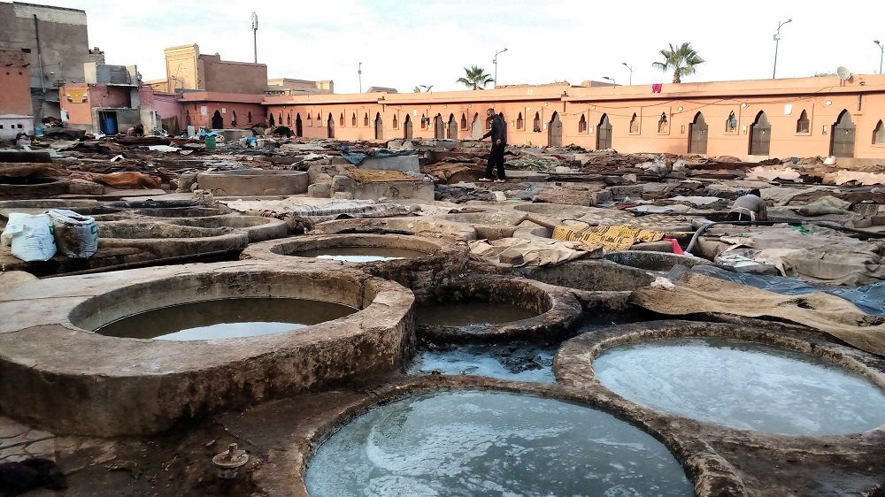 walking around the tanneries in Marrakech