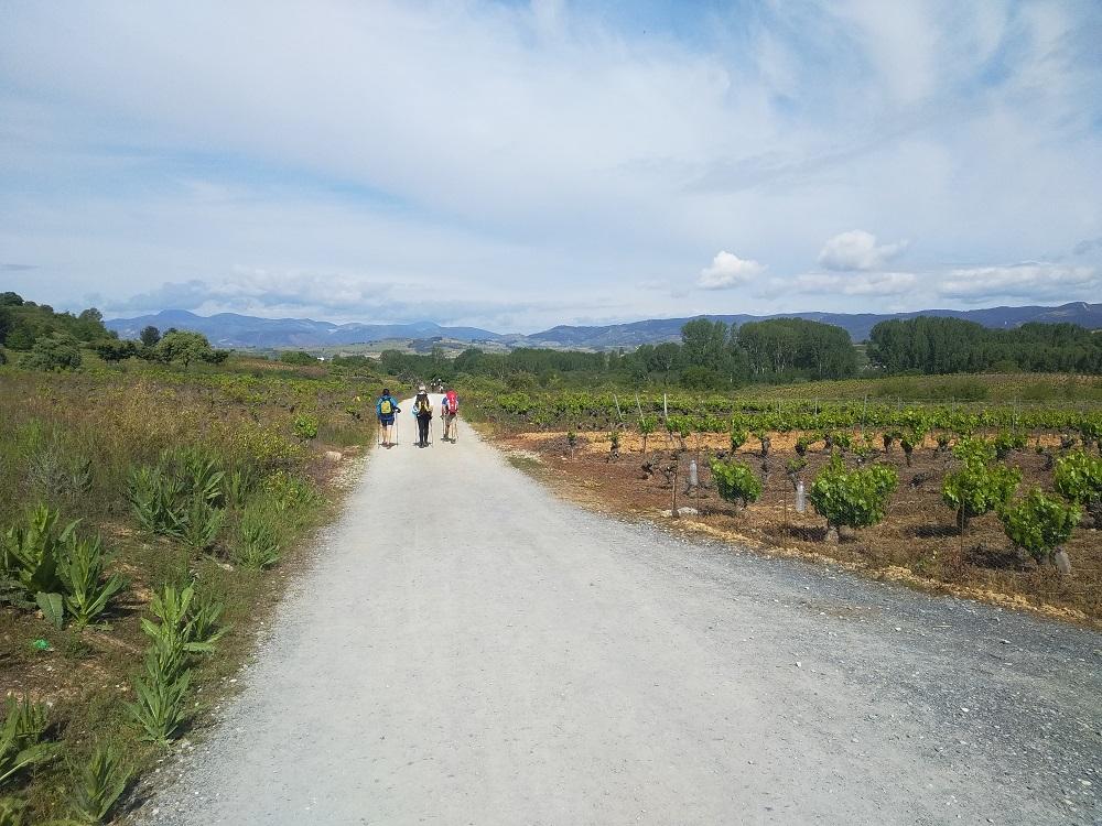 walking the Camino de Santiago alone