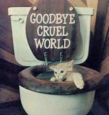 Addio mondo crudele!