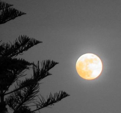 Luna piena a Diano Marina