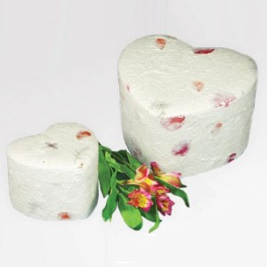 cremation ashes natural burial