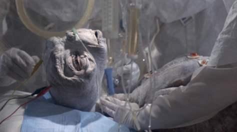 E.T. s'éveille à la vie transformé. Il est maintenant prêt à rejoindre les siens. La mort symbolique et la vie sont le lot de tout initié.