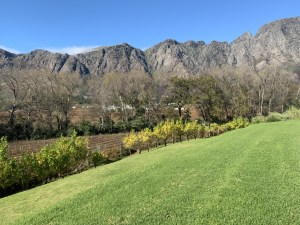 Franschhoek Wine Tram South Africa, South African Safari, Luxury Travel Agent, Where to stay in South Africa