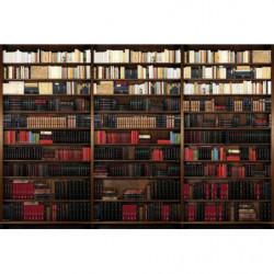 papier peint bibliotheque