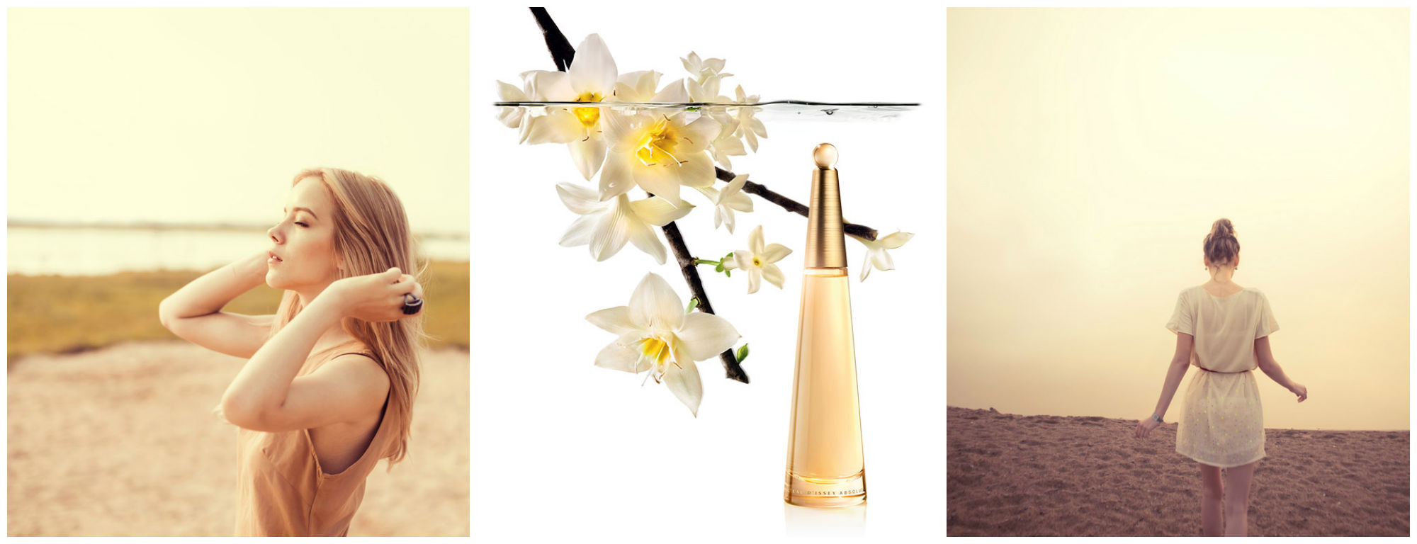 Perfume of the Day: Issey Miyake L'eau D'issey Absolue