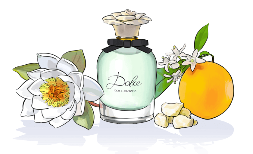 Dolce by Dolce & Gabbana: Scent of Endearment