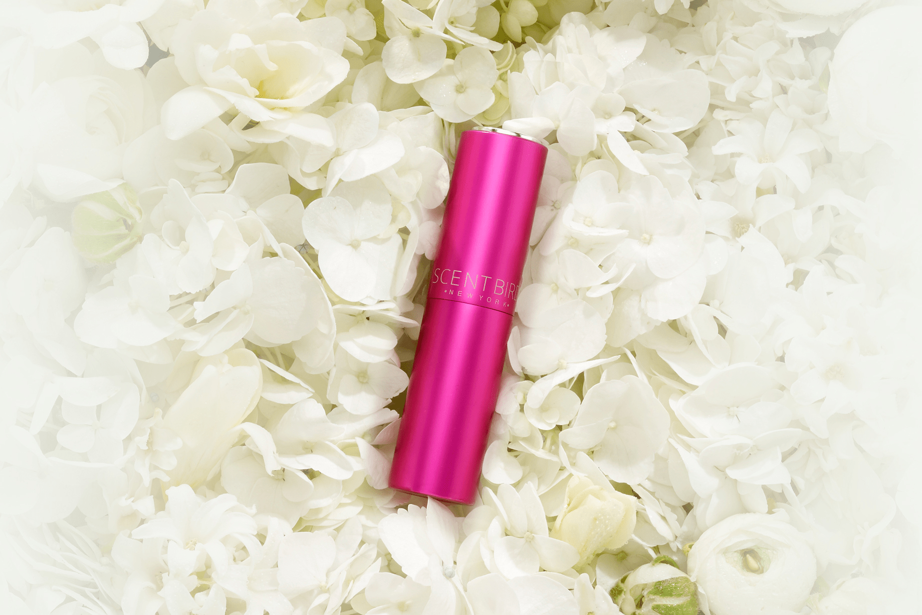 Scentbird Goes Pink This October