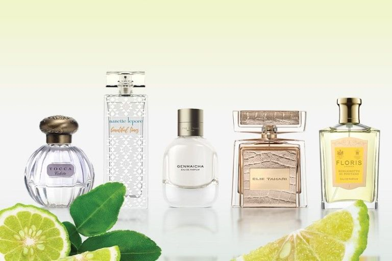 Bergamot Fragrance Edit