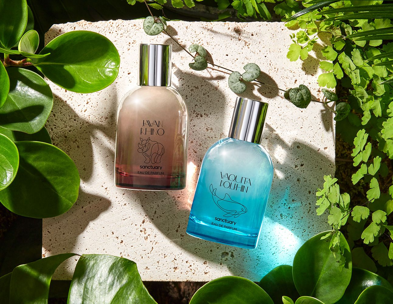 New Scent Launches August 2021