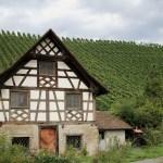 【スイス】元修道院のセミナーハウスの美しい庭とモダンレストラン