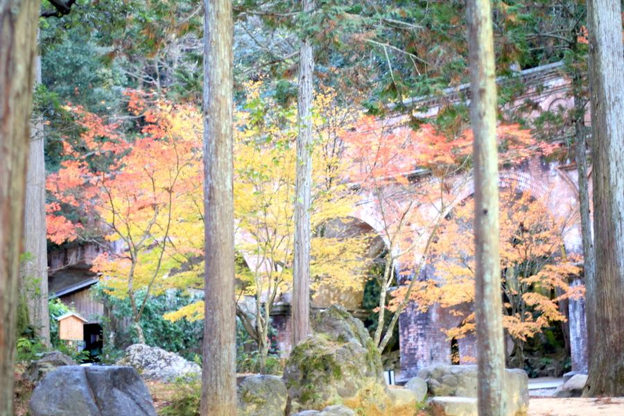 nanzenji autumn