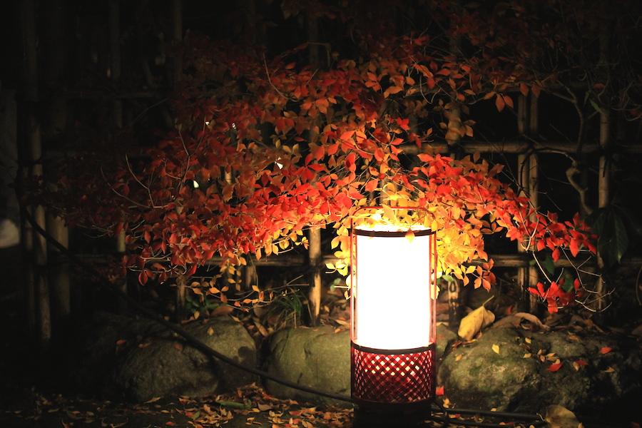 arashiyama hanatoro2