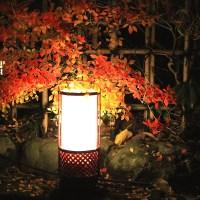 【京都洛西】嵐山花灯路4つの攻略法