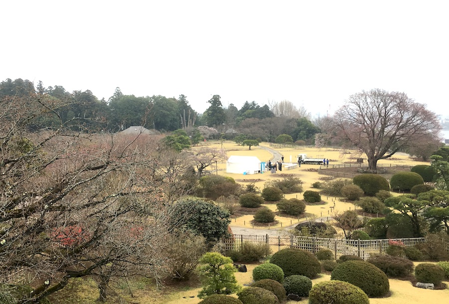 view from kobuntei