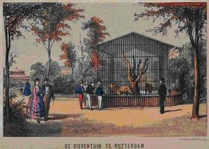 blijdorp-1865