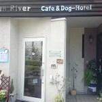 dog cafeに行ってきました